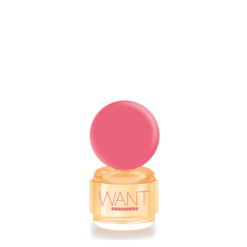 DSQUARED2                                - Want - Pink Ginger - 1RCX01WPGPR